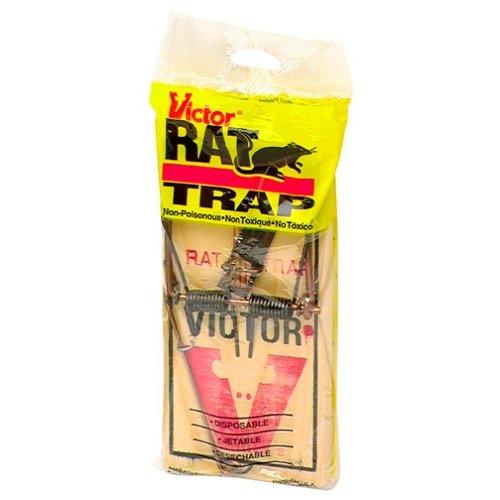 Using Rat Traps